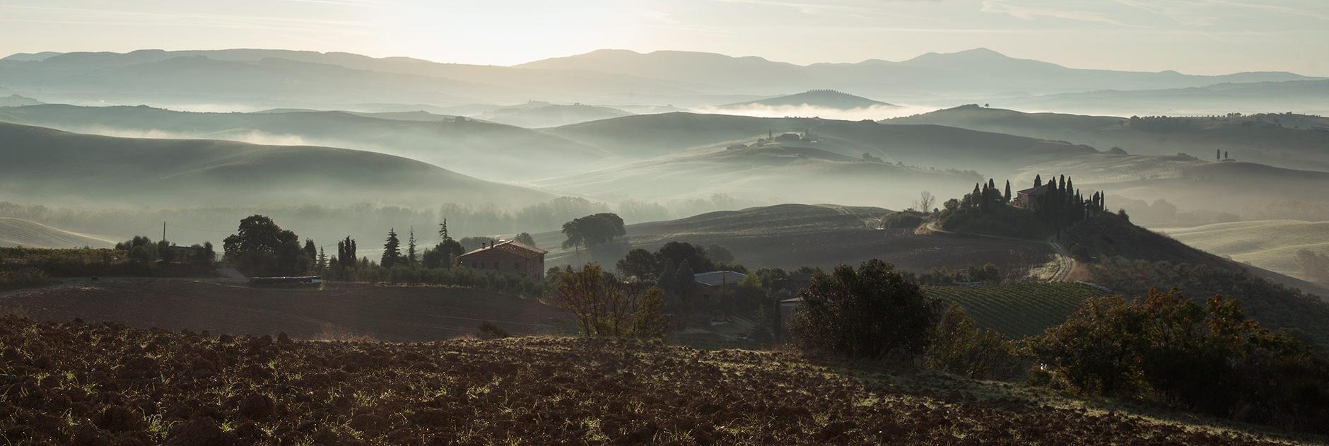 Michelle Grant | Landscapes