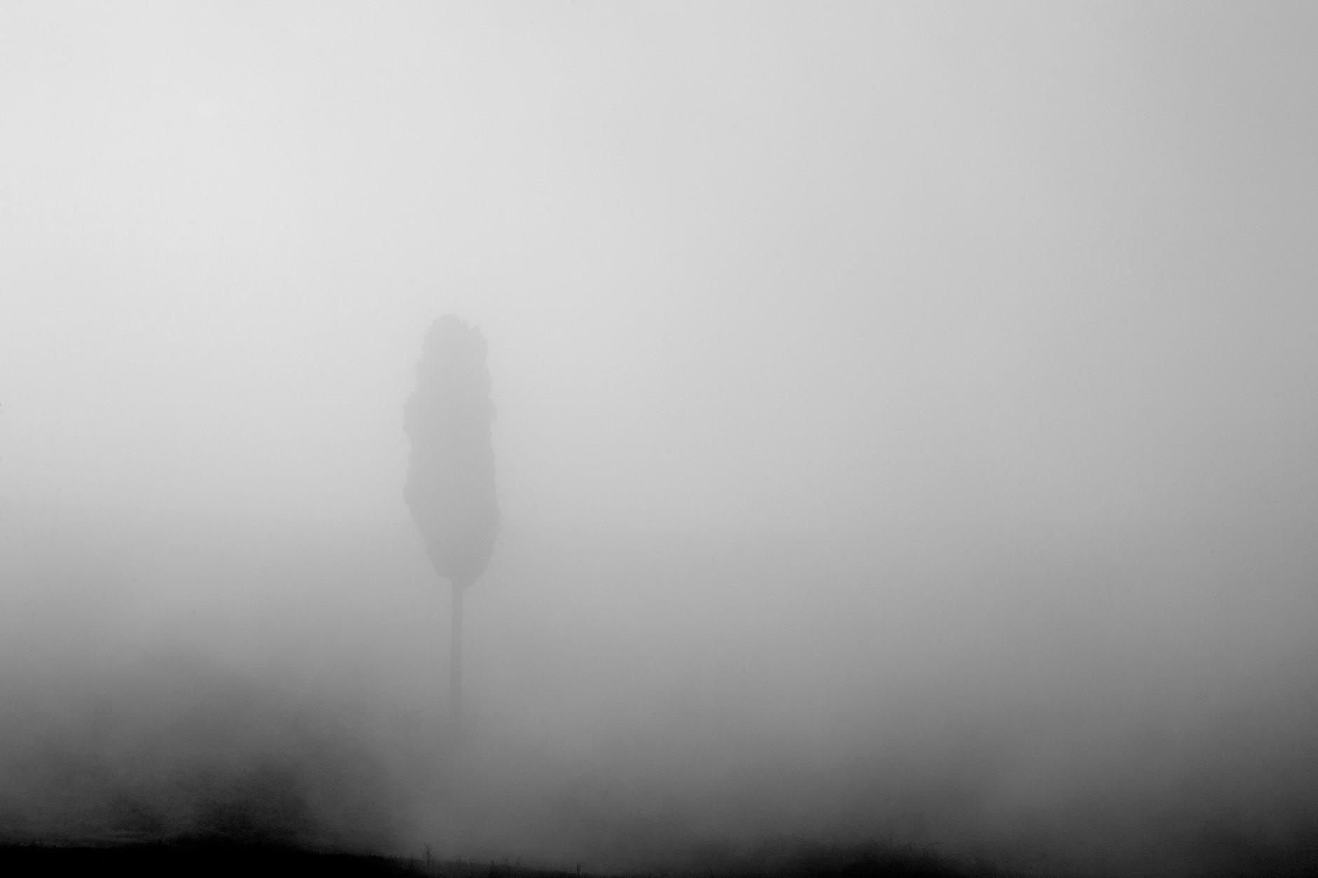 Michelle Grant | Stillness | come ships go #2